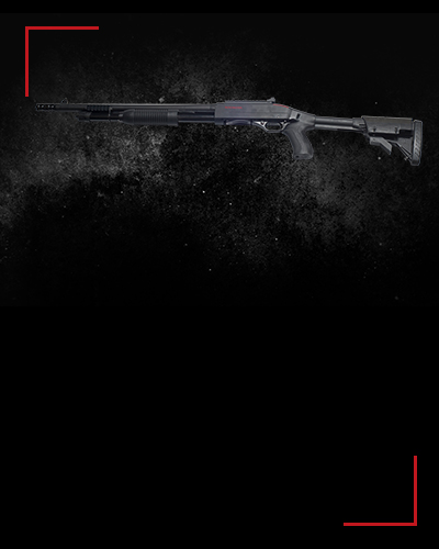 Winchester SXP<br /> 5 zł / shot