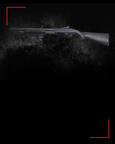 Mossberg 590<br /> 4/6 zł / shot