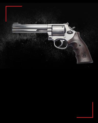 Smith & Wesson 686<br /> 4 zł / shot